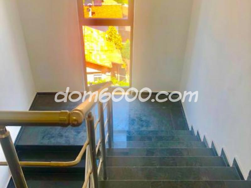 dom6000.com - недвижими имоти - продажби и наеми